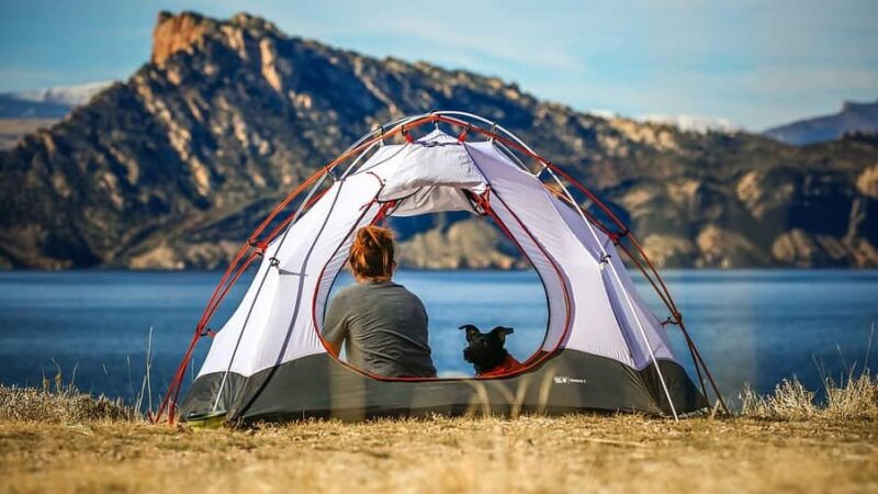 Best Tent For Dogs Review